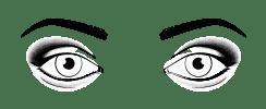Augenform Hervorstehende Augen